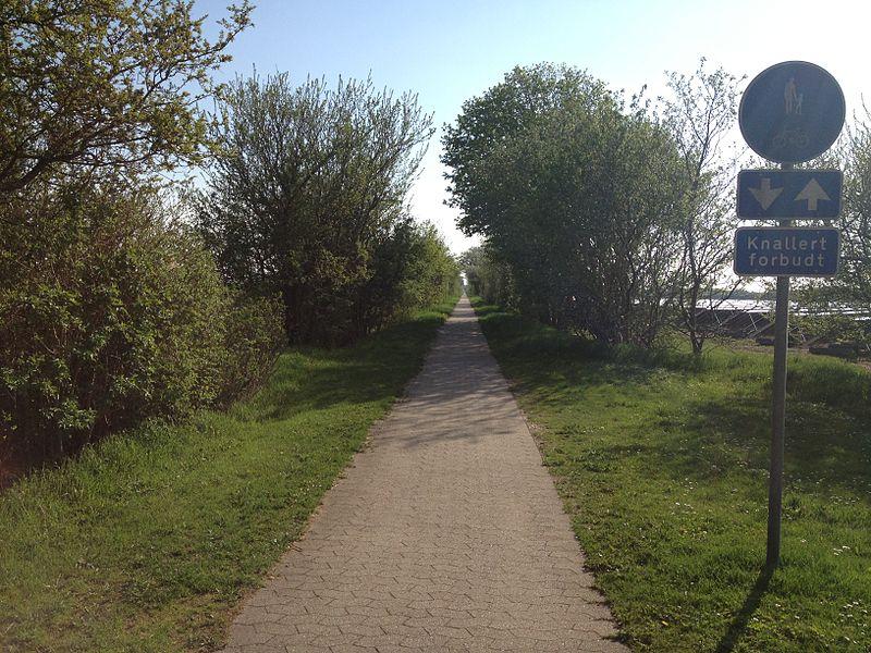 Alhedebanen - Viborg to Herning