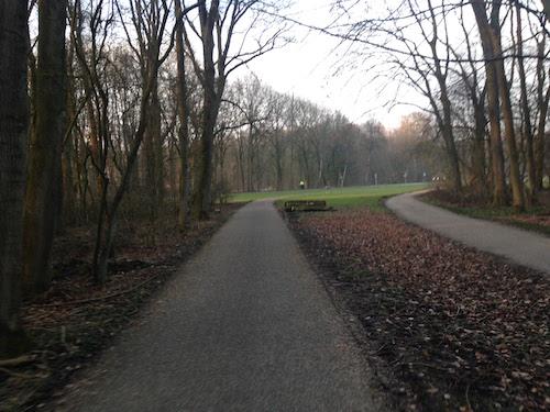 amsterdamsebos4