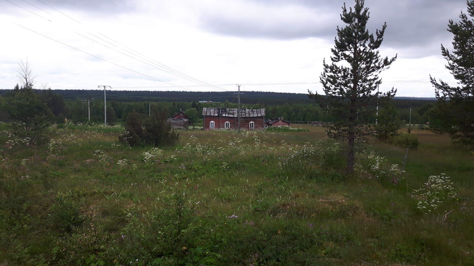 On the road from sodankyla Finland