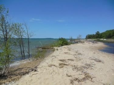 Walk of Art - Shorescape by Mama Nature