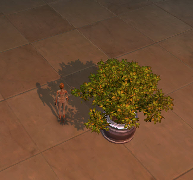 swtor-potted-plant-green-bush-2
