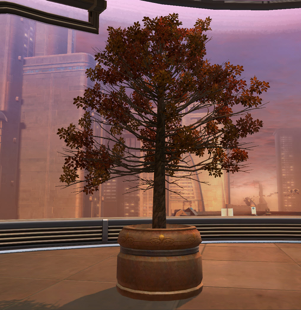 swtor-potted-tree-autumn