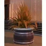Potted Plant: Brown Shrub