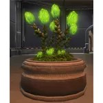 Planter: Glowing Plague Bulbs