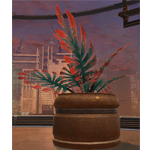 Potted Plant: Yavin Jungle Fan