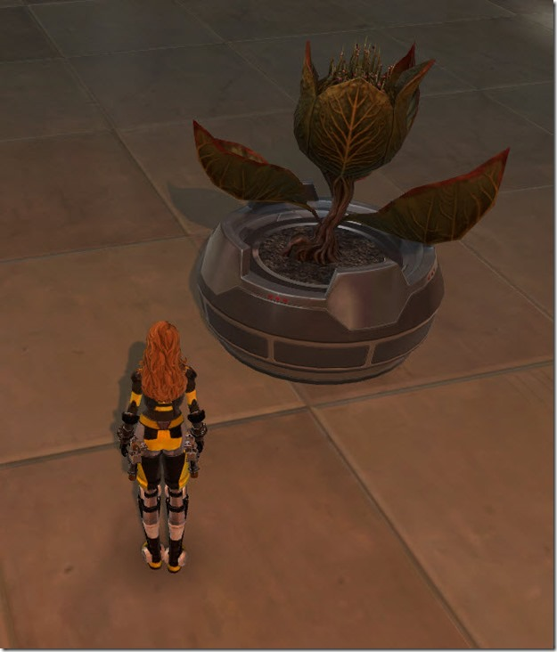 swtor-potted-plant-blooming-bud-2