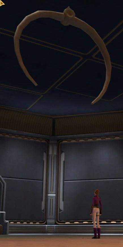 massive-hanging-rib-2