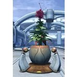 Planter: Exotic Resort Flower