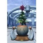 Planter: Exotic Resort Flower