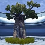 Dantooine Tree (Large)