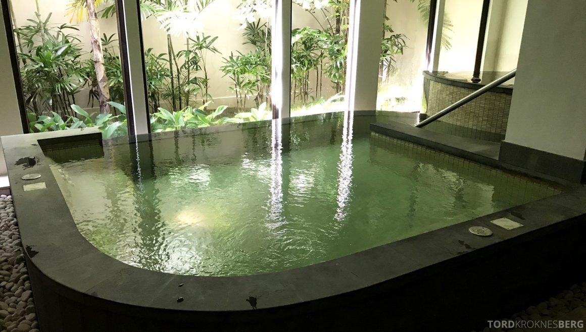 Ritz-Carlton Bali varmtvannsbasseng