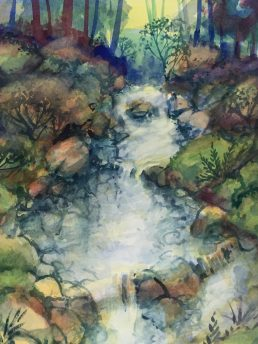 STREAM WITH DETAIL FOREST FLOOR (5)