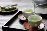 紅茶・緑茶・烏龍茶 違いは一体何なの??