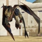 Golden Lizardbat