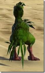 Orokeet - Back