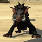 Shadow Nekarr Cat