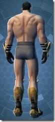 Ascendant's Alloy - Male Back