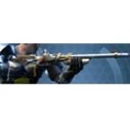 Raider's Cove Boltblaster / Demolisher Blaster Rifle*