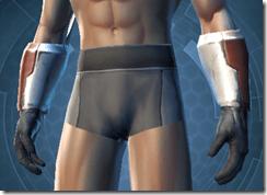 Shield Warden Male Gauntlets
