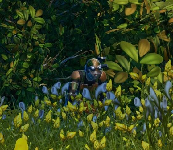 Sefone-Forest-Battle-Plan