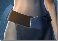 Secret Agent Belt