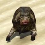 Hill Nerf Calf