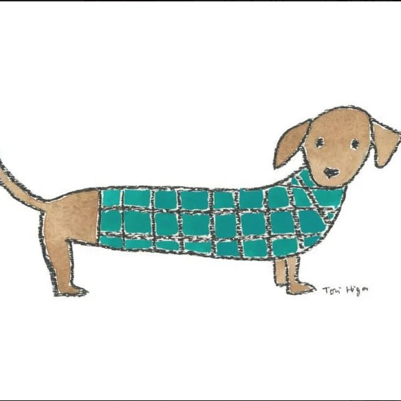 Sweater Dog