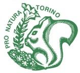 PNTorino