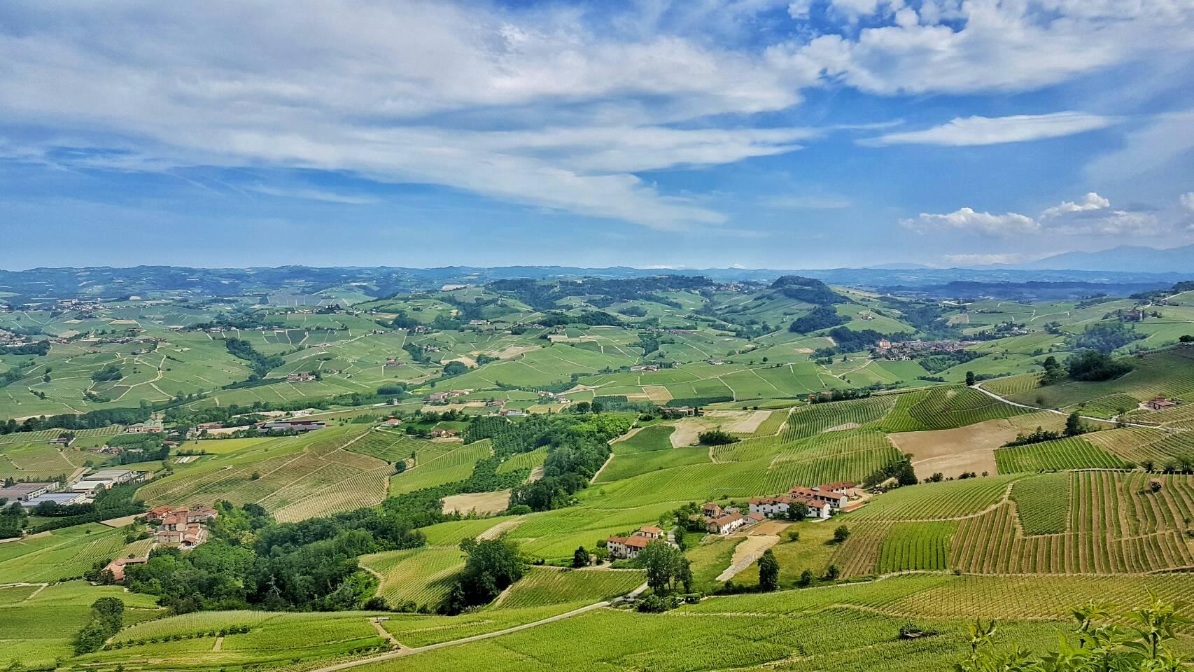 バルバレスコ|イタリア•ワイナリー巡り 世界遺産の「葡萄畑の景観」を眺め味わう極上のワイン