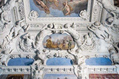 Torino, Interni del Castello del Valentino-5326