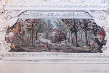 Torino, Interni del Castello del Valentino-5396