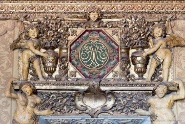 Torino, Interni del Castello del Valentino-5479