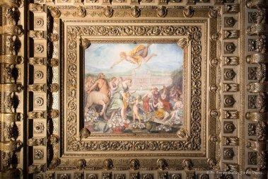 Torino, Interni del Castello del Valentino-5498