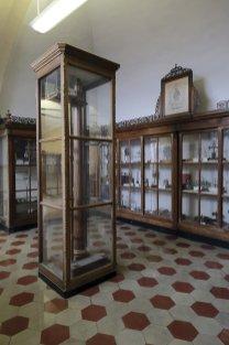Real Collegio Carlo Alberto - le collezioni museali