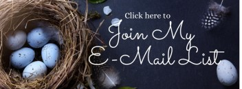 Email List Banner