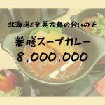 薬膳スープカレー 8,000,000|北海道と奄美大島の合いの子のカレーが衝撃的|松江市片原町