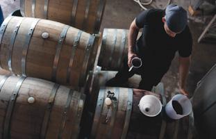 樽を1つずつ確認しワインを出来を見る