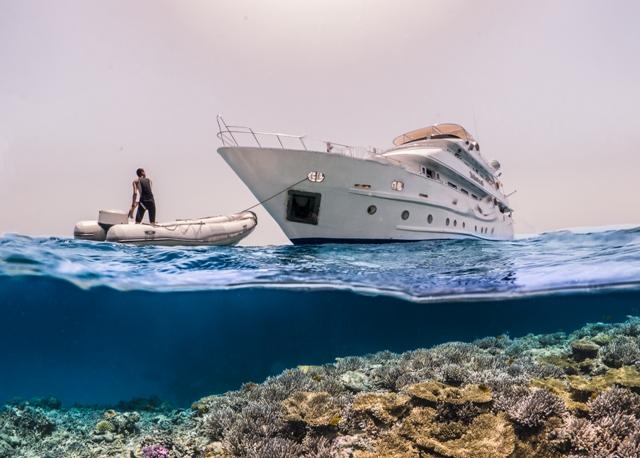 Red Sea Liveaboards
