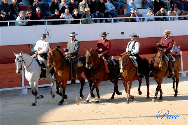 carrousel_de_DV_top_palavas_2010_red