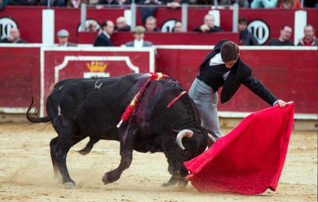 El Juli. Albacete 2015