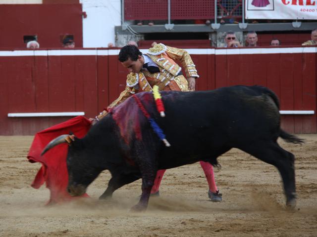 Joaquim Galdos toréant le novillo de l'Astarac.