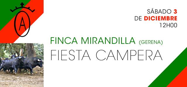 thumbnail_fiesta-campera