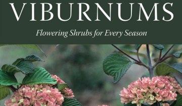 Viburnums_620x359