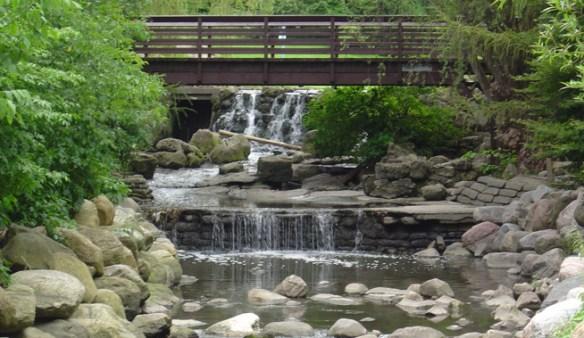 creek and waterfall at edwards gardens in toronto's botanical garden