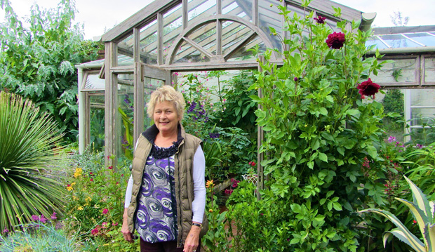 helen dillon in front of greenhouse