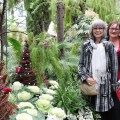 allan gardens tour group holiday