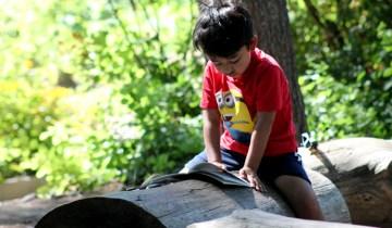 tbgkids boy reading a book on a log
