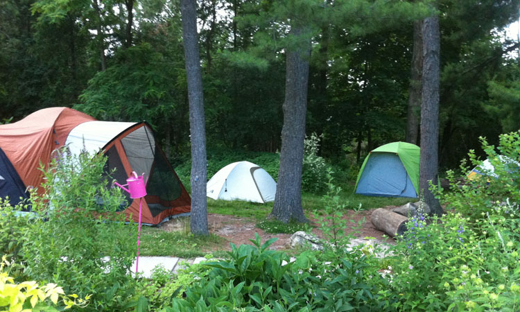 Garden Sleepover (ages 5 and up)