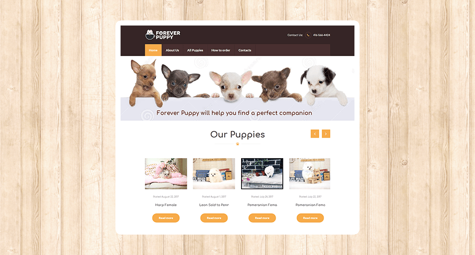 Responsive website for a puppy adoption