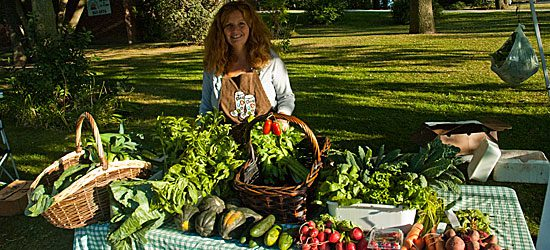 Guildwood market manager and co-founder Gail Ross sells organic produce.